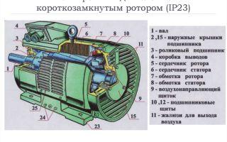 Принцип работы асинхронного двигателя с короткозамкнутым ротором – советы электрика