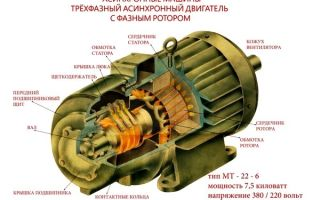 Что значит асинхронный двигатель – советы электрика