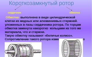 Короткозамкнутый ротор что это такое – советы электрика